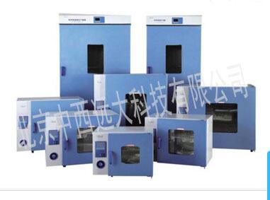 立式鼓风干燥箱DHG-9620A