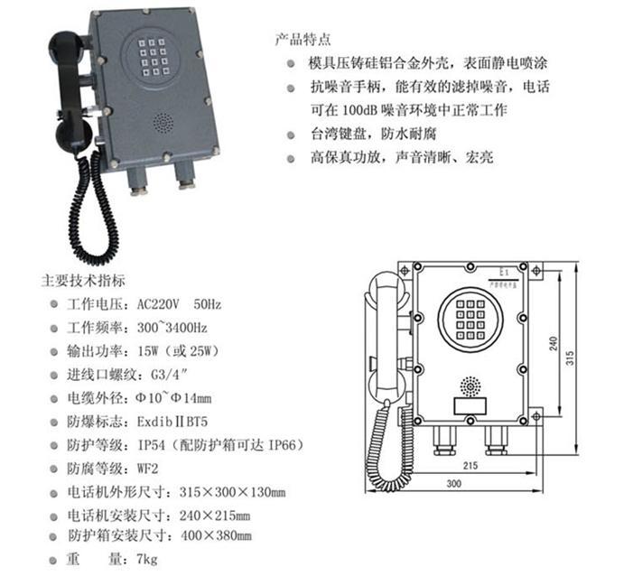 HZBA型扩音呼叫防爆自动电话机+DYS型防爆扬声器FF20-HZBA