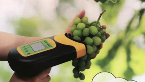 苹果品质检测仪 型号:BD6C-H100F