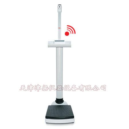 SECA220型柱秤用量高尺