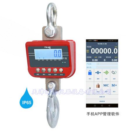TN-12000防水无线吊秤