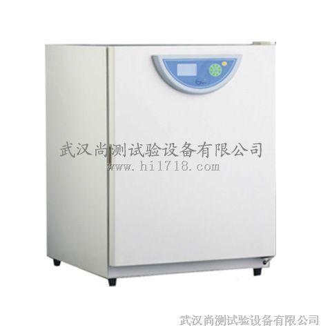 武漢二氧化碳培養箱